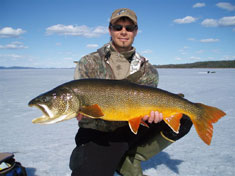 Alaska Lake Trout courtesy Alaska Dept of Fish and Game