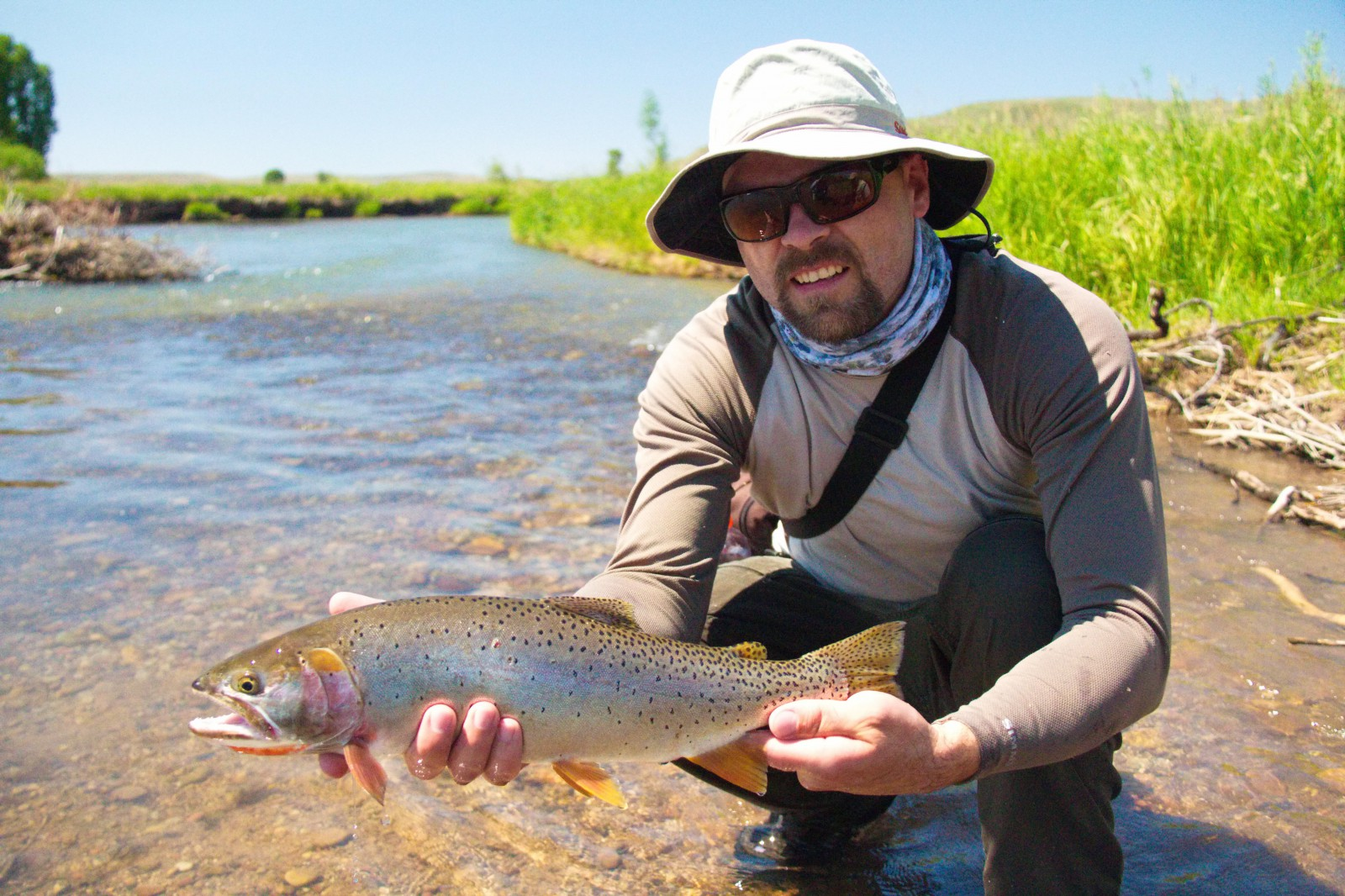 Smith's Fork Bonneville Cutthroat Trout